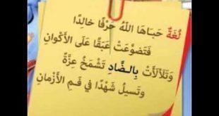 قصائد في اللغة العربية , اجمل الاشعار باللغة العربية الفصحى