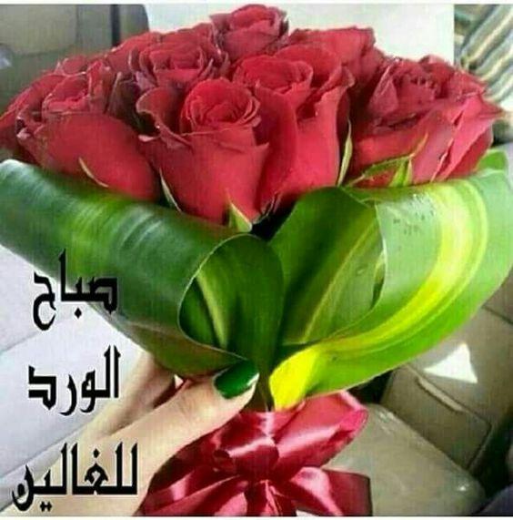 صورة صباح الورود والزهور , اجمل صباح معطر بالورود والزهور