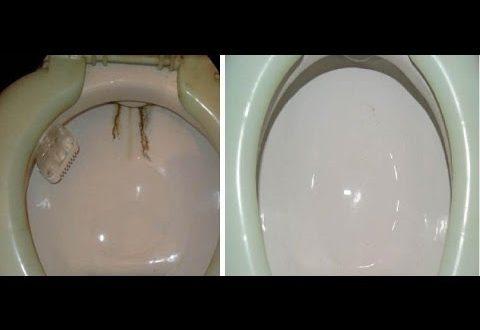 صور طريقة تنظيف كرسي الحمام , للحصول على كرسي مرحاض نظيف