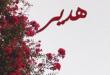 صور صور اسم هدير , جمال الاسم يكفى