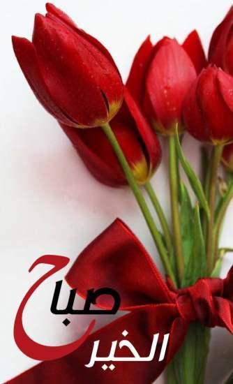 صورة صباح الخير ورود , شاهدي باقة من الورود الرائعة والمحتلفة من نوعها