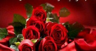 صور صباح الخير ورود , شاهدي باقة من الورود الرائعة والمحتلفة من نوعها