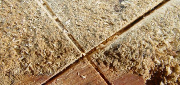 صور استخدامات نشارة الخشب , تعرف على طرق الانتفاع من النشاره