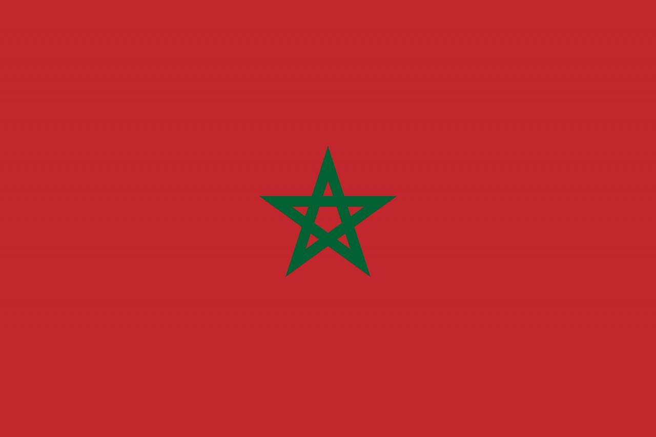 صورة صورة علم المغرب , خلفيه للعلم المغربى 2705 2