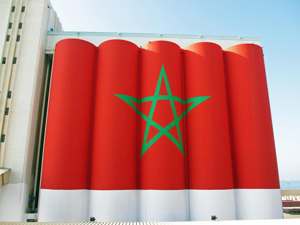 صورة صورة علم المغرب , خلفيه للعلم المغربى 2705 5