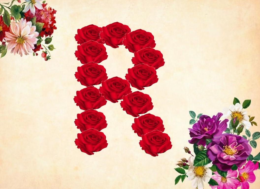 حرف R بالورد لاجمل المناظر الطبيعية بالوان الزهور المبهجة اعتذار و اسف