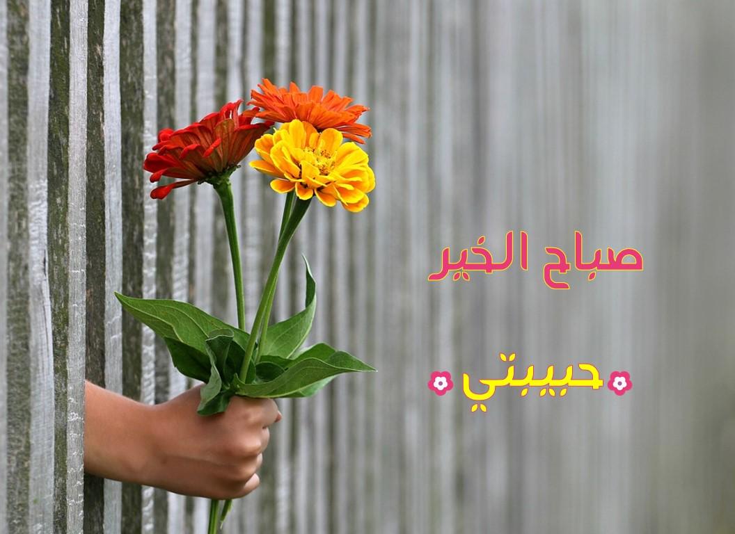 صورة احلى صباح لعيونك , حب وشوق وصبح جميل دعوة للتفاؤل للمحبين