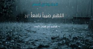صورة ما اجمل المطر , لو علمنا الخير فى المطر لتمنيناه طول ليالينا