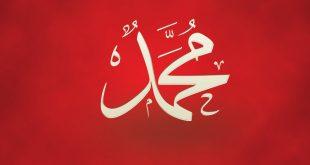 صورة بوستات باسم محمد , اشهر الاسماء باحلى البوستات تعرف على الشكل الجديد
