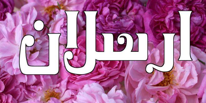 صورة معنى اسم ارسلان , عاوه اسم لبنت ومحتاره اليكي اجمل الاسماء