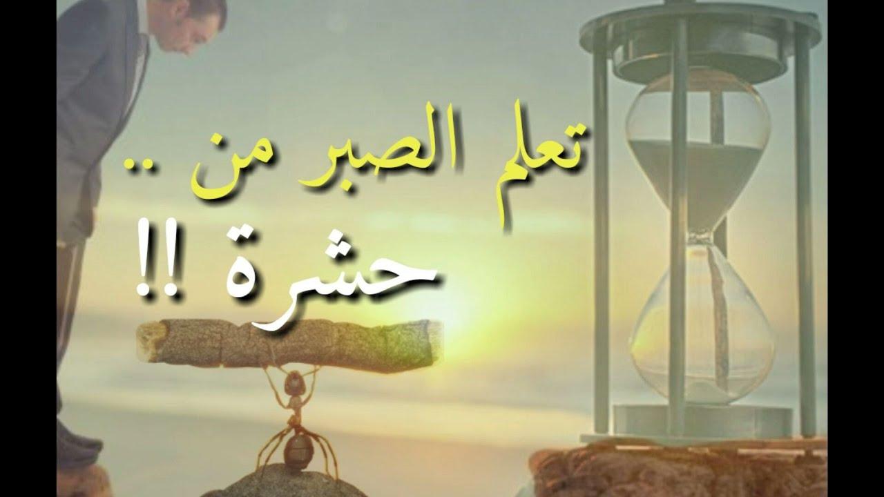 صورة قصص اسلامية مؤثرة ومبكية , قصص تعلمنا الخوف من الله 838 2